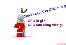 Chief Executive Officer là gì