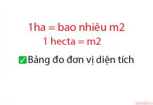 1ha = bao nhiêu m2