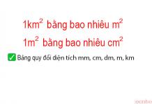 1km2 bằng bao nhiêu m2