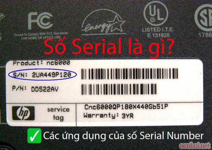 Số Serial là gì